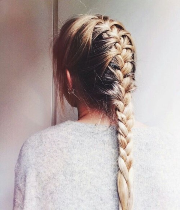 french braided hairstyles0001
