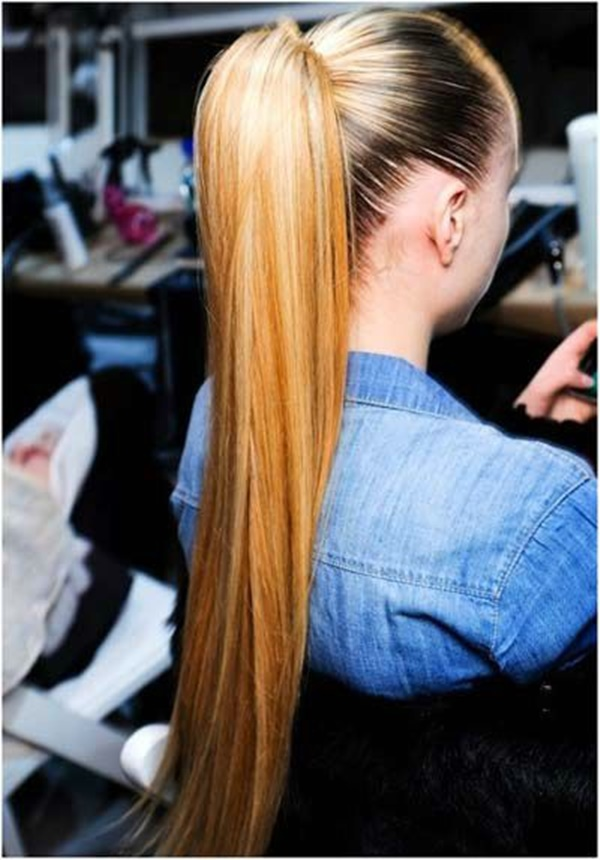 ponytail hairstyles for long hair (17)